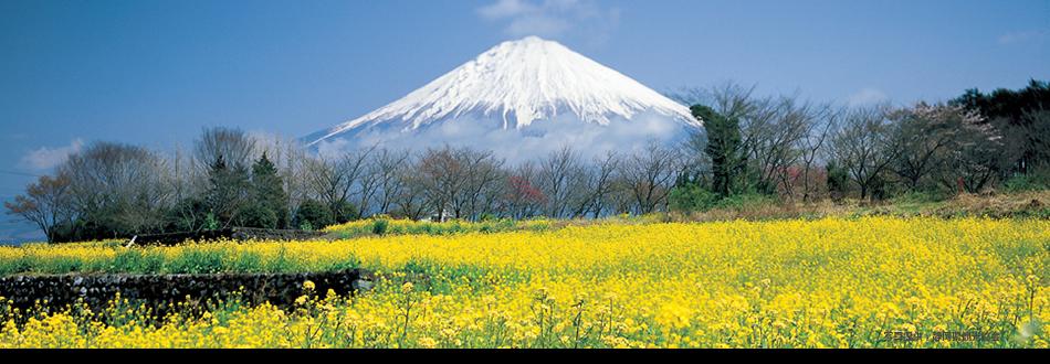 静岡県の商業教育